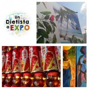 UN DIETISTA A EXPO 7